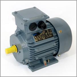 Motor   .55kW 4P 380V B3 (80 19mm)